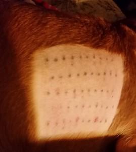 Watson allergy testing